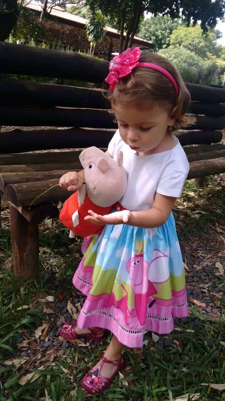 vestido da peppa pig Elas vestem vestidos infantil de festa Ana Giovanna