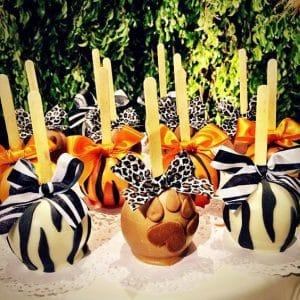 festa,safári,cake,pop